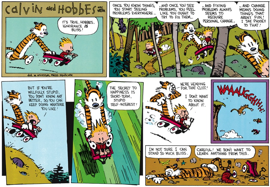Calvin and Hobbes Self Interest